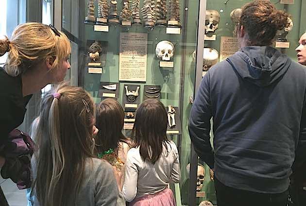Børn kan også have fornøjelse af udstillingen - med en opmærksom voksen lige ved hånden. Foto: Klaus Larsen