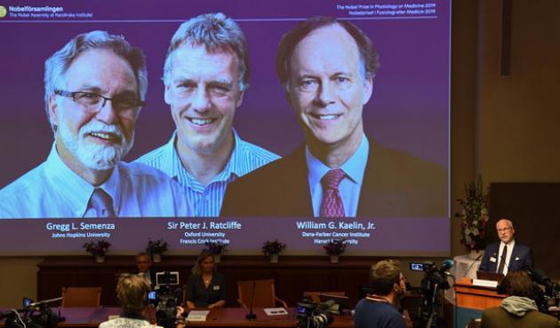 Vinderne af Nobelprisen i medicin 2019: Gregg Semenza, Peter Ratcliffe og William Kaelin. Foto: Jonathan Nackstrand / Ritzau Scanpix